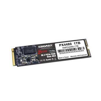 1TB KINGMAX PX4480 (M.2, PCIe Gen 4 x4)